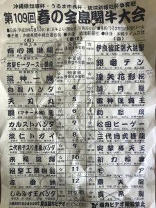 2018(H30)5.13 春の全島一闘牛大会